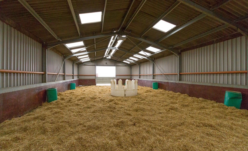 Equestrian facilities at New Hall Stud