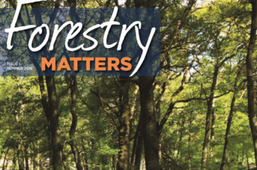 Forestry Matters