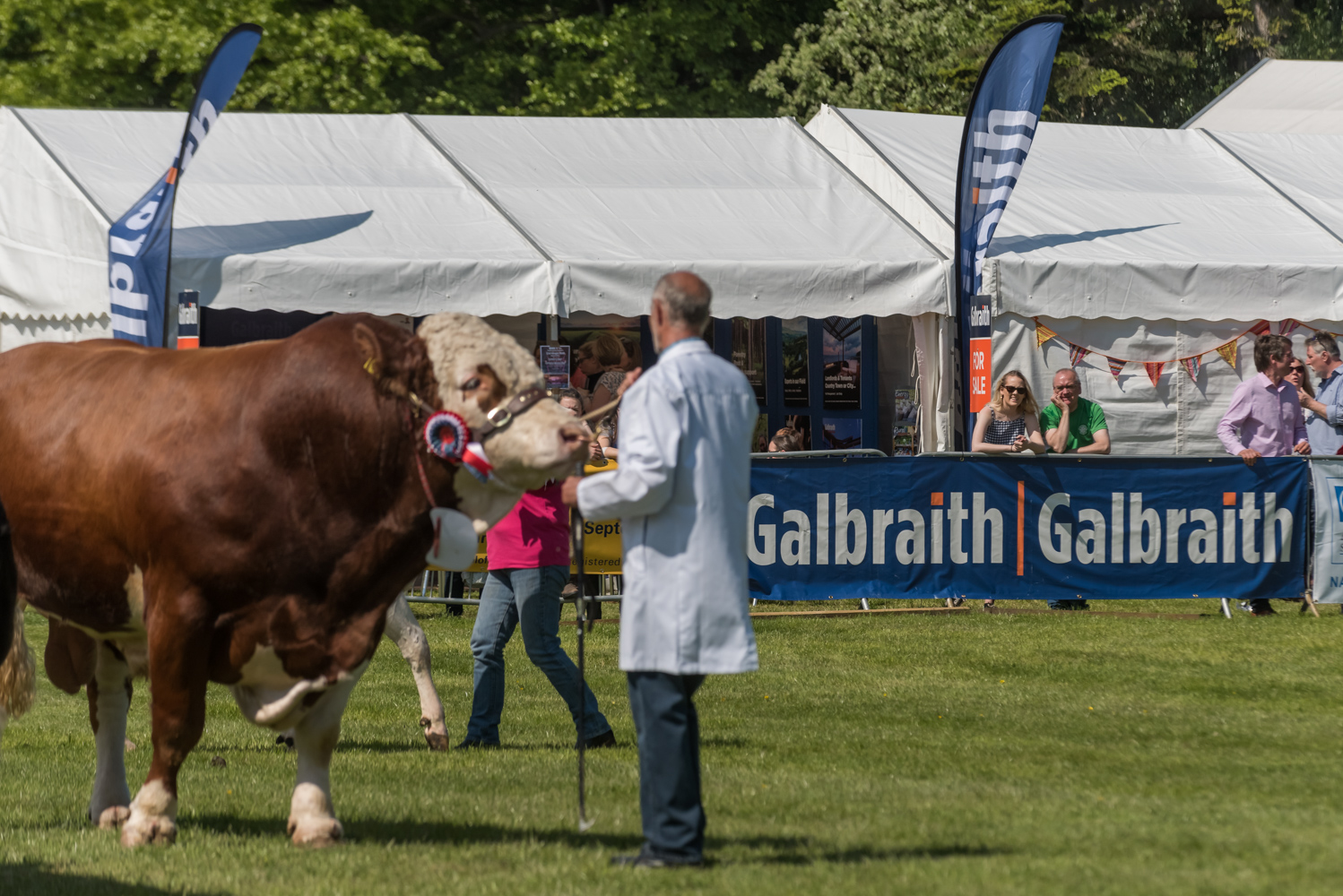 Galbraith Events - Moy Game Fair