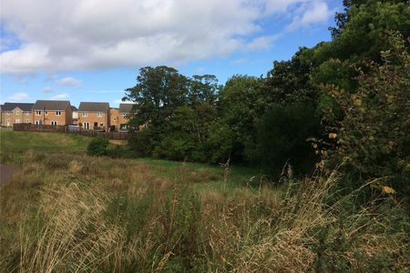 House Plot On Kilwinning Road
